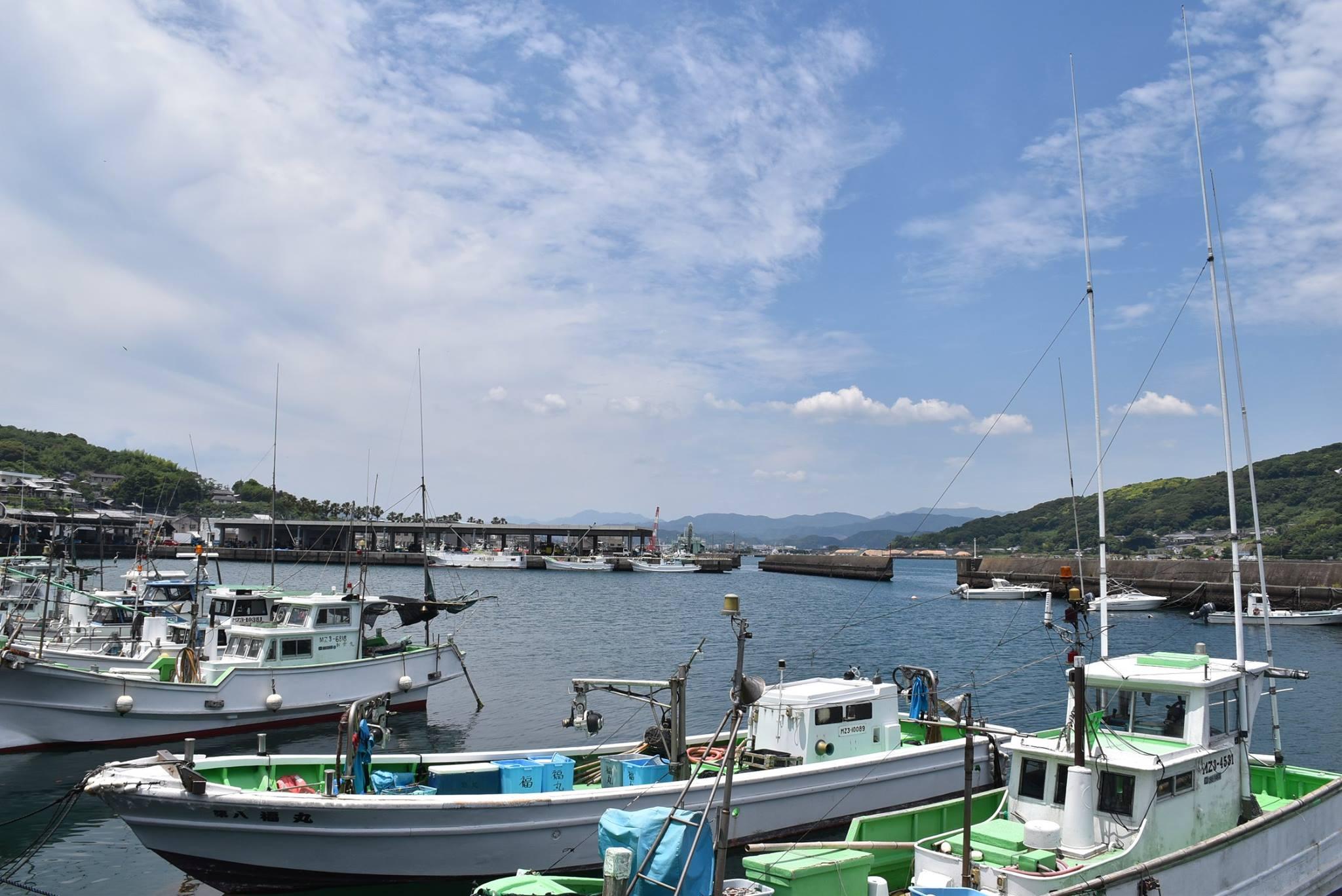 日向の海の玄関口細島港。新鮮で美味しい魚を食べられるスポットでもある