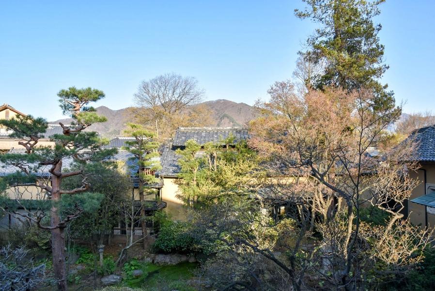 対談は美しい庭園が広がる市川さんの邸宅で行われた
