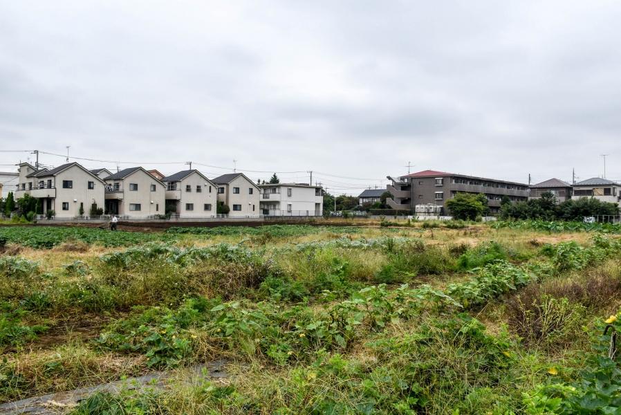三鷹市の真ん中に広大な農園が広がります